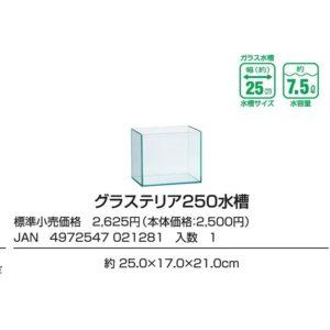GEX Glassterior 250 GX021281
