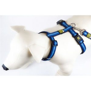 Max & Molly Booster Blue Harness L MM130016