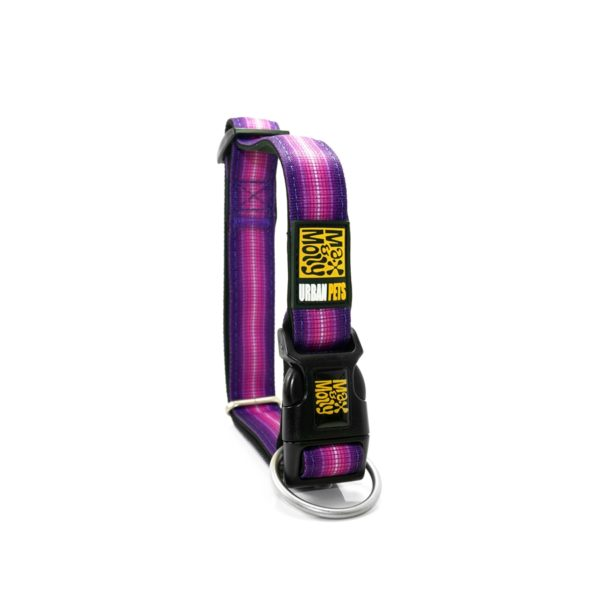 Max & Molly Booster Purple Collar M MM132003