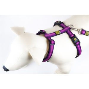Max & Molly Booster Purple Harness M MM132015