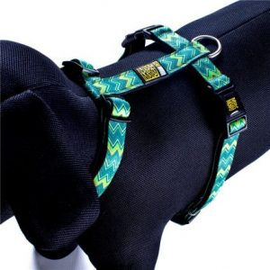 Max & Molly Vintage Harness XS MM122013